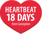 Heartbeat 18 days from conception